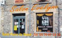 Salon evelyne copie
